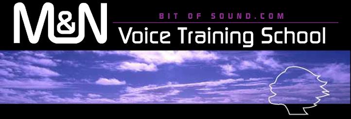 東京吉祥寺のボイストレーニングスクールM&N Bit Of Soundのロゴ